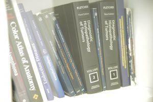 Важность морфологического исследования