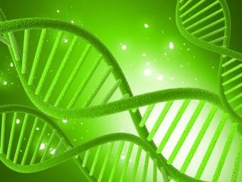 Генетические исследования при онкологии