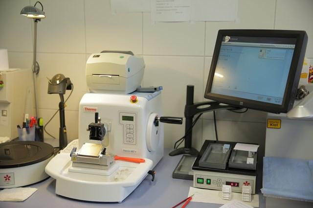 Методика проведения иммуногистохимического исследования