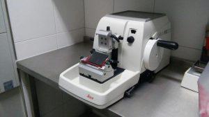 Анализ биопсии в Саратове