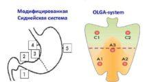 Протоколы OLGA — стандарт эндоскопии желудка