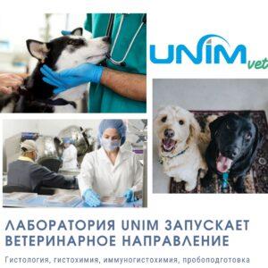 Запуск UNIMvet